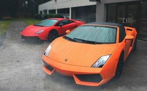 Picture rain, gallardo, lamborghini, Lamborghini