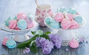 Picture branch, sweets, dessert, lilac, sweet, Anna Verdina, meringue, meringue