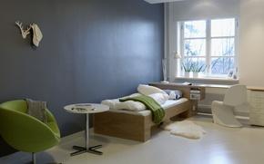 Picture table, lamp, plants, chair, window, bed, pillow, blanket, cap, Mat, pots, table