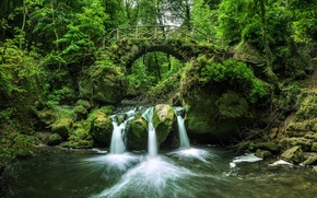 Picture forest, bridge, river, waterfall, Luxembourg, Luxembourg, the Black ernz river, Black Ernz river, Mullerthal, Mullerthal, ...