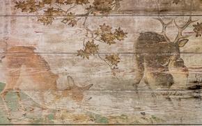 Picture background, figure, Board