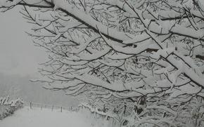 Picture winter, mountains, Azerbaijan