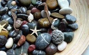 Wallpaper macro, sea, stones