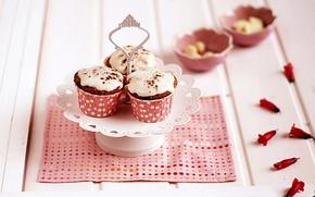 Wallpaper pink, petals, cakes, cakes, napkin, glaze, cupcakes