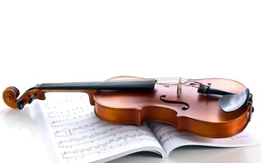 Wallpaper notes, violin, strings, white background, journal, musical instrument