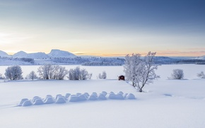 Picture the snow, Lyngen Alps, Balsfjord, snow, mountains, winter, Balsfjord, trees, panorama, Norway, Troms, Troms, Norway, ...