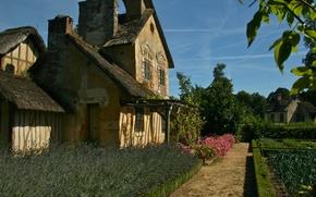 Picture landscape, house, garden