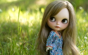 Picture grass, hair, doll, dress, girl