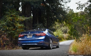 Wallpaper forest, BMW, road, nature, B7 19, ALPINA