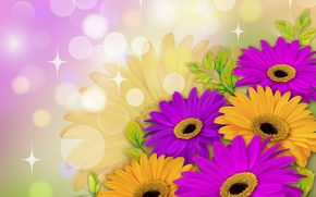 Picture flowers, background, yellow, purple, leaves, gerbera