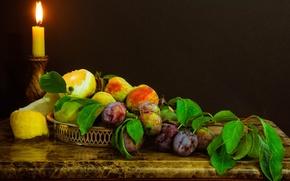 Picture lemon, candle, branch, fruit, still life, peaches, plum
