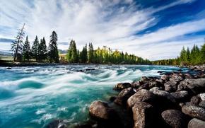 Picture landscape, river, stones