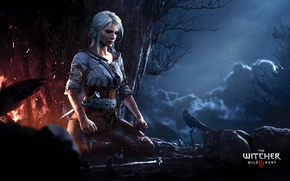 Picture forest, girl, night, fire, meditation, The Witcher, Ciri, cirilla, The Witcher 3: Wild Hunt |