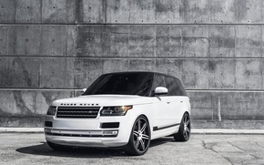 Picture white, reflection, white, Blik, land rover, range rover, the front, glass, range Rover, land Rover