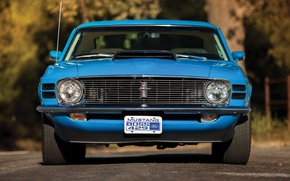 Picture Mustang, Ford, 1970, Boss