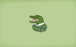 Picture crocodile, sweater, alligator, lacoste, it's in the fabric, blondiegbg