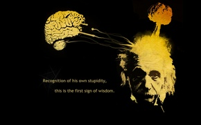 Picture text, abstraction, figure, thoughts, Albert Einstein, Einstein, scientist, Albert Einstein, Scientists, Einstein