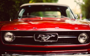 Wallpaper red, Mustang, Mustang, red, ford, Ford, the front, classic, bokeh