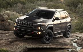 Picture car, SUV, suv, Jeep, 2013, Cherokee, Trailhawk
