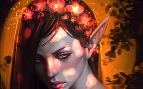 Picture eyes, look, girl, flowers, face, elf, art