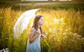 Picture field, the sun, umbrella, girl, Vladimir Smith, Vladimir Smith