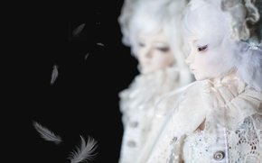Picture reflection, doll, feathers, black background, white hair, doll, BJD