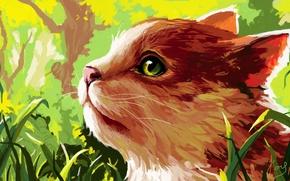 Picture cat, grass, figure, profile