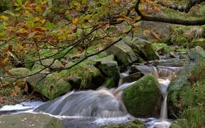 Picture autumn, river, stream, stones