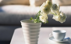 Picture photo, mood, Wallpaper, beauty, morning, Cup, vase, flowers, roses