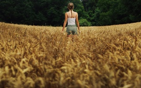 Picture field, summer, girl, panorama