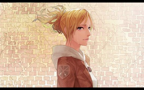 Picture tears, profile, emblem, brick wall, Shingeki no Kyojin, Annie Leonhart, The invasion of the giants