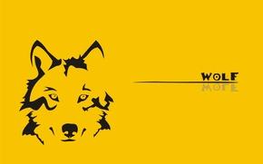 Wallpaper wolf, yellow, wolf