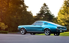 Picture blue, Mustang, Ford, 1967, Fastback, side