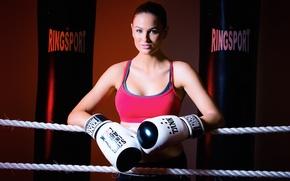 Wallpaper Boxing, girl, sport
