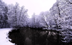 Wallpaper water, winter, snow, nature, trees, river, forest