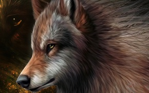 Picture graphics, art, wolf, wool