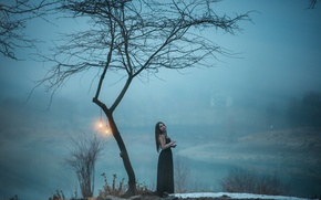 Picture girl, dress, tree, fog, hair, lamps