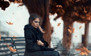 Picture cold, leaves, girl, the wind, Alessandro Di Cicco, Cold Autumn