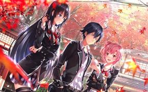 Picture autumn, art, Autumn, scenic, oregairu, Yuigahama Yui, yahari ore no seishun love come wa machigatteiru, …
