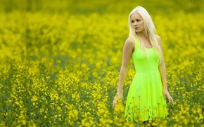 Picture field, girl, color, dress, Cathy