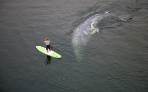 Picture the ocean, the situation, kit, athlete, male, Board