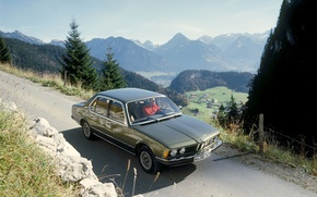 Picture greens, forest, mountains, green, green, shark, BMW, village, BMW, wheels, forest, casting, mountains, classic, Boomer, ...