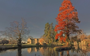 Picture autumn, the sky, trees, duck, pond, castle