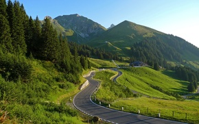 Picture road, nature, landscapes