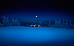 Picture forest, snow, night, a month, house