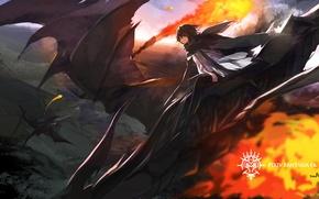 Picture the sky, flight, fire, magic, dragons, anime, art, guy, swd3e2