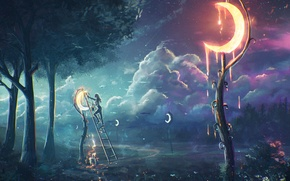 Picture girl, trees, night, the moon, ladder, Crescent