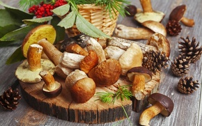 Picture table, red, nature, bumps, dumb-dumb, white, berries, wallpaper., boletus, blur, bokeh, food, Rowan, mushrooms, autumn