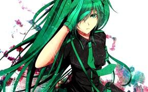 Picture girl, art, vocaloid, hatsune miku, Vocaloid, Love is War, loudspeaker, Liuli