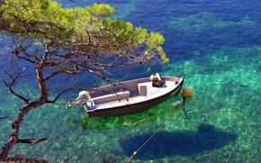Wallpaper water, transparency, tree, boat, shadow, Bay